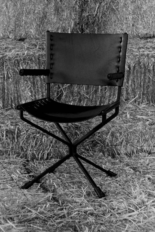 A Chair for the Director